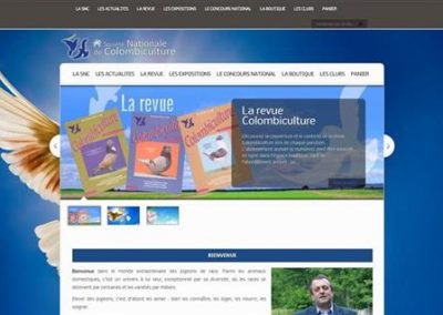 pigeons-france.com